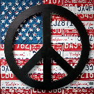 Aaron FOSTER : American Flag Peace Sign