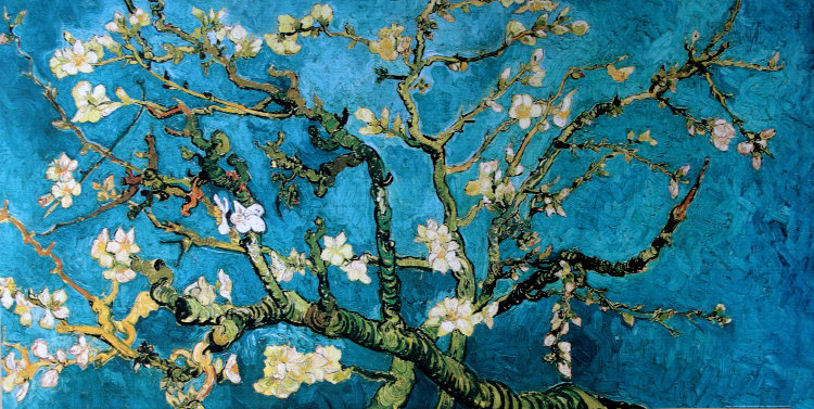 Vincent VAN GOGH : Almond Branch in bloom, 1890 : Reproduction, Fine ...