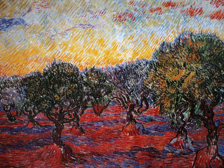 vincent van gogh   the olive trees  1889   reproduction