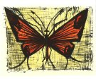Bernard BUFFET : Le papillon orange