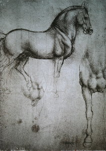 Leonardo Da Vinci poster, Study of the horse