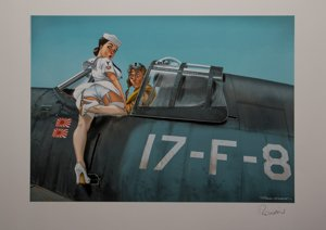 Romain Hugault, Pin-up, Avion 17-F-8