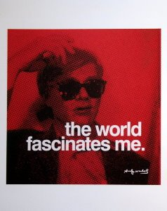 Stampa Warhol, The world fascinates me